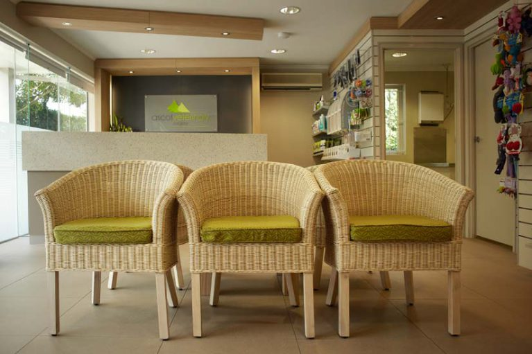 Ascot Veterinary Surgery reception design by McKibbin Design